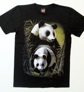 Animals-Pandabeer-002-